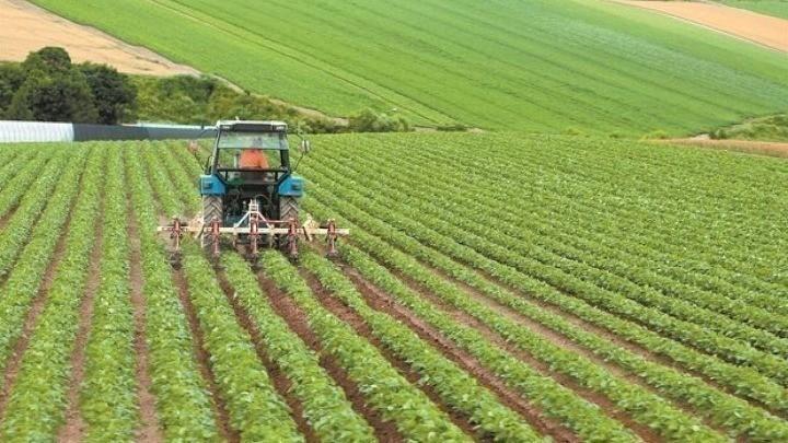 ΕΣΠΑ: Ενίσχυση 260 εκατ. ευρώ στους αγρότες – Ποιοι είναι οι δικαιούχοι