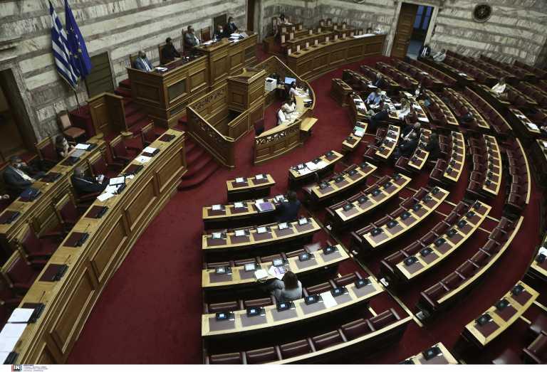 Βουλή: Ψηφίστηκε επί της αρχή το νομοσχέδιο για τα ζώα συντροφιάς