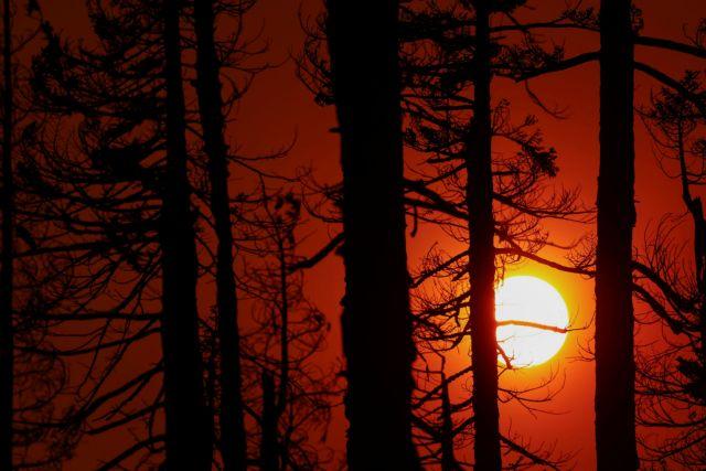 ΗΠΑ – Ο Μπάιντεν κήρυξε κατάσταση έκτακτης ανάγκης στην Καλιφόρνια λόγω της πυρκαγιάς Κάλντορ