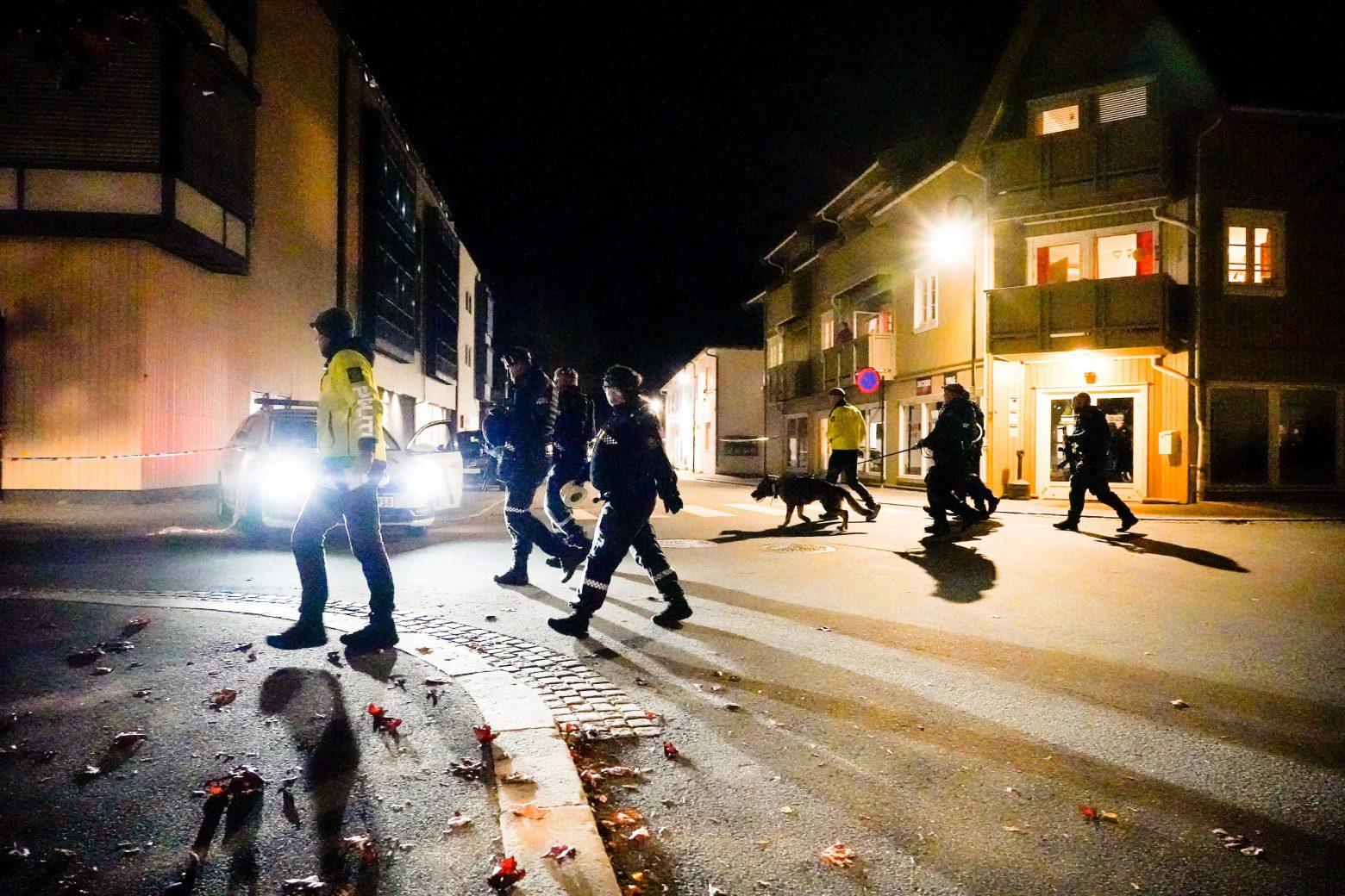 Νορβηγία – Τουλάχιστον τέσσερις νεκροί από την επίθεση με το τόξο